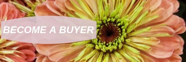 BECOME A BUYER